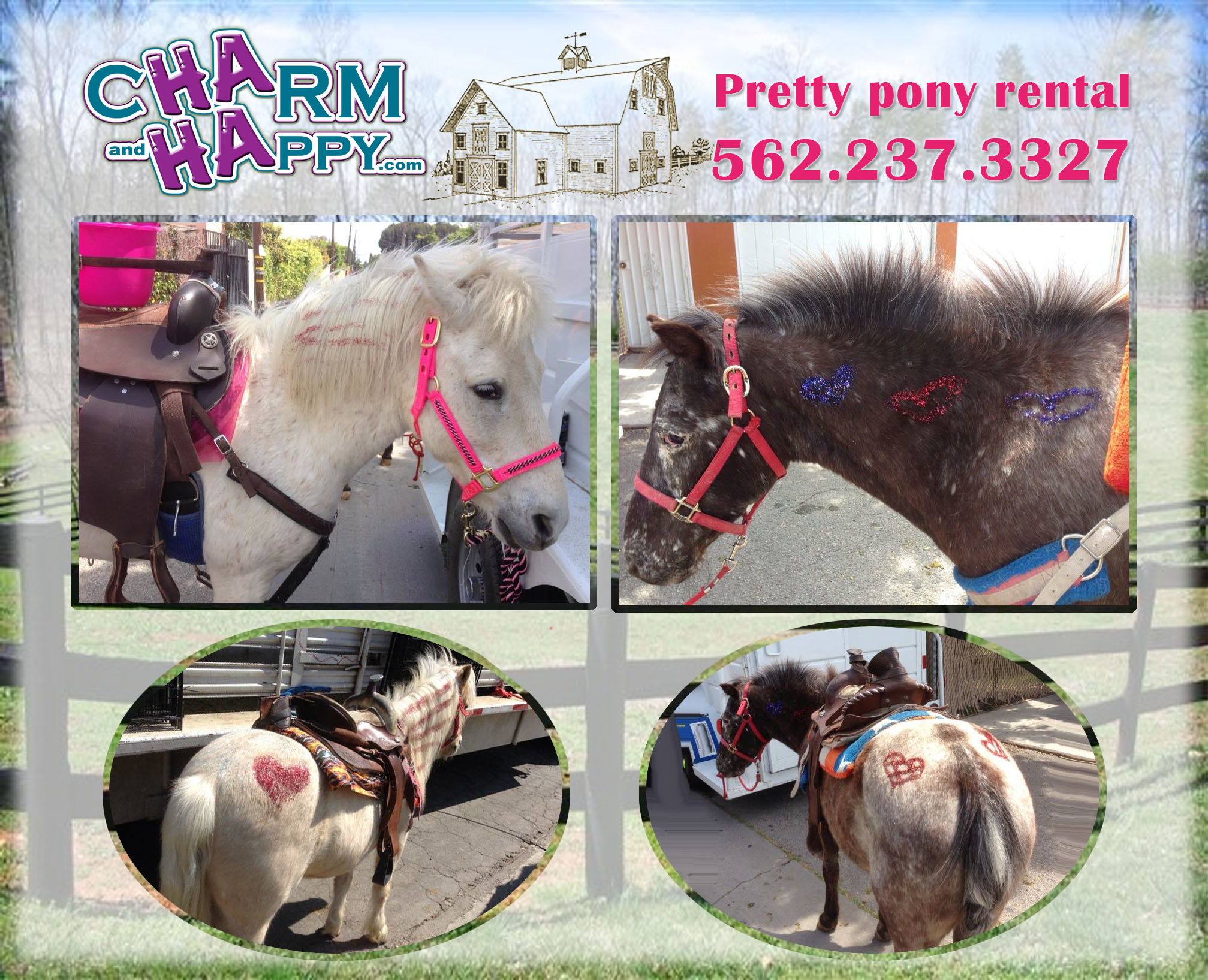 CharmandHappy.com Pony and petting zoo rental Los Angeles Whittier SoCal 562-237-3327